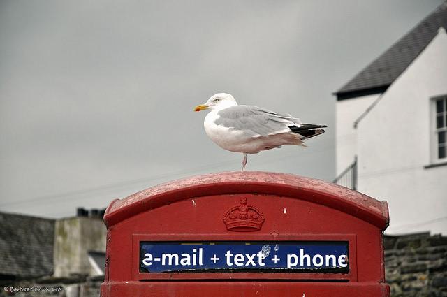 mail-call